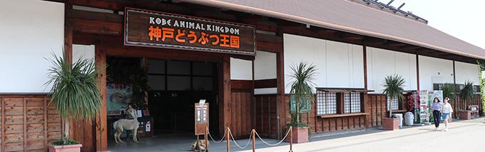 神戸どうぶつ王国トップ