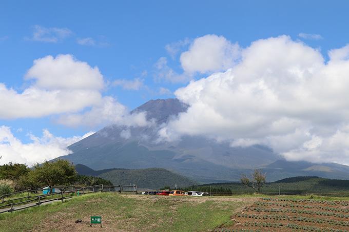 富士サファリパーク 富士山