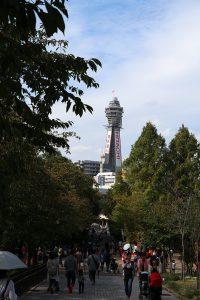 天王寺動物園から眺める通天閣