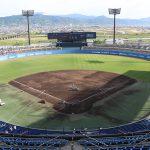 愛媛・松山坊っちゃんスタジアムでの野球観戦のススメ。スワローズの野球観戦に行ってきました。